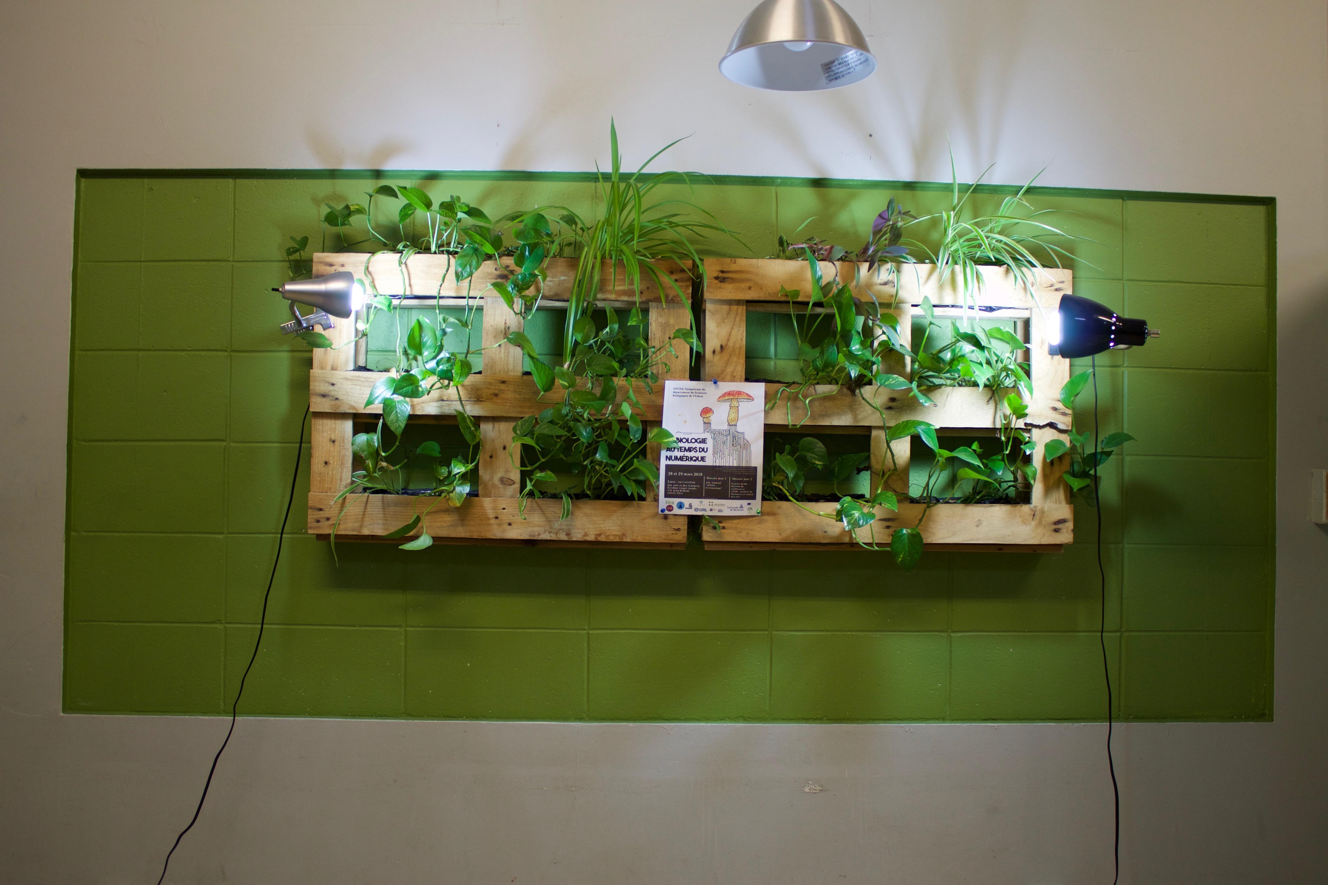 Le café Vivarium, biotope de la vie étudiante